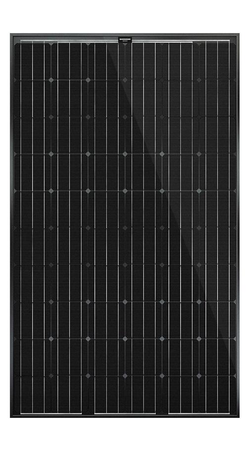 PV-Modul Aleo Solar S79